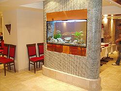 En fantastisk miljö hos en persisk/ libanesisk restaurang i Stockholm, där vårt inbyggda akvarium blivit grädden på moset i en för övrigt mycket smakfull inredning. Volym 392 liter. Storlek 140 cm brett, 40 cm djupt och 70 cm högt.